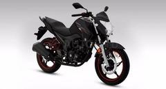 MOTO GUERRERO GR5 230cc